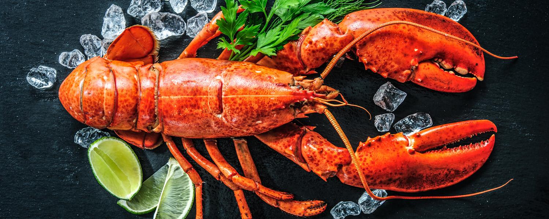 Homard-exception-Cuisine-et-Ocean