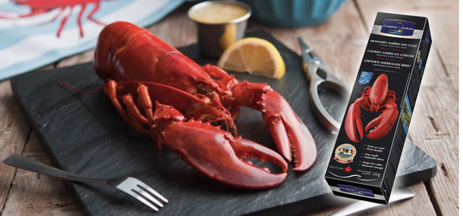 Cooked American Lobster